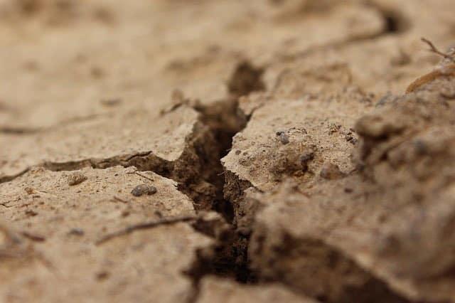 صورة لاحد انواع التربة الزراعية
