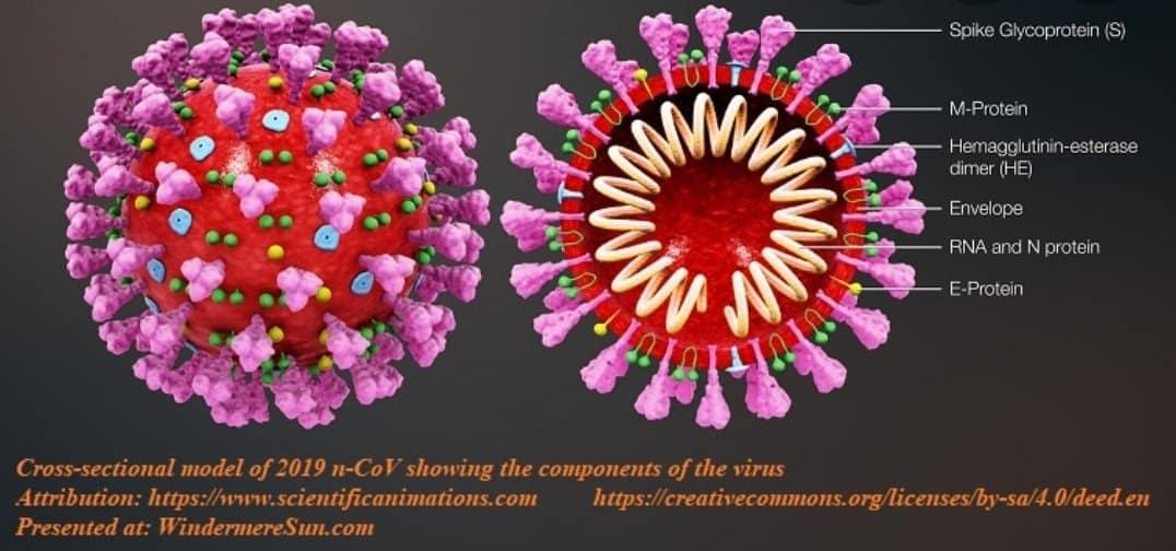 بحث في اسهامات الكيميائيين