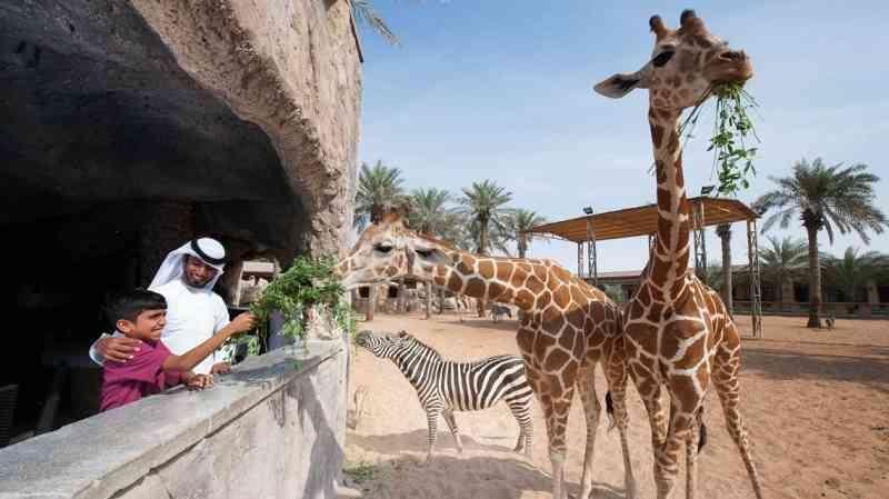 افضل حديقه حيوانات الرياض